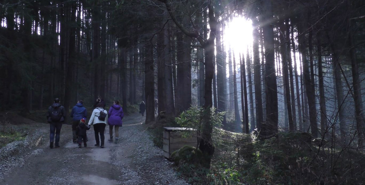 A family walks down a forrest path